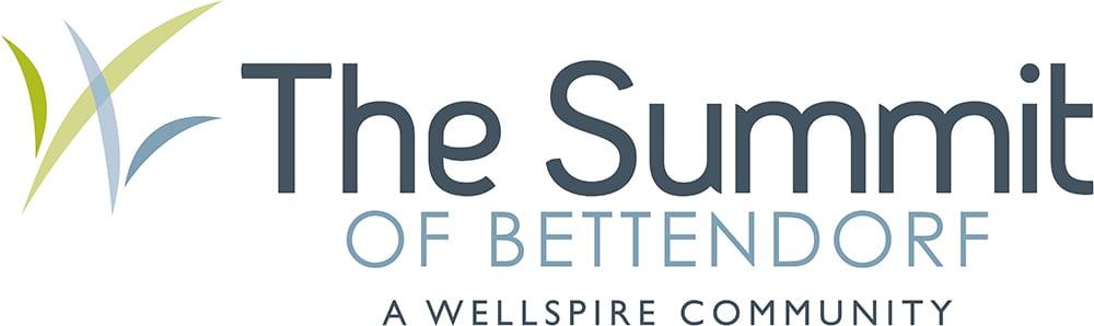 The Summit Horizontal Logo